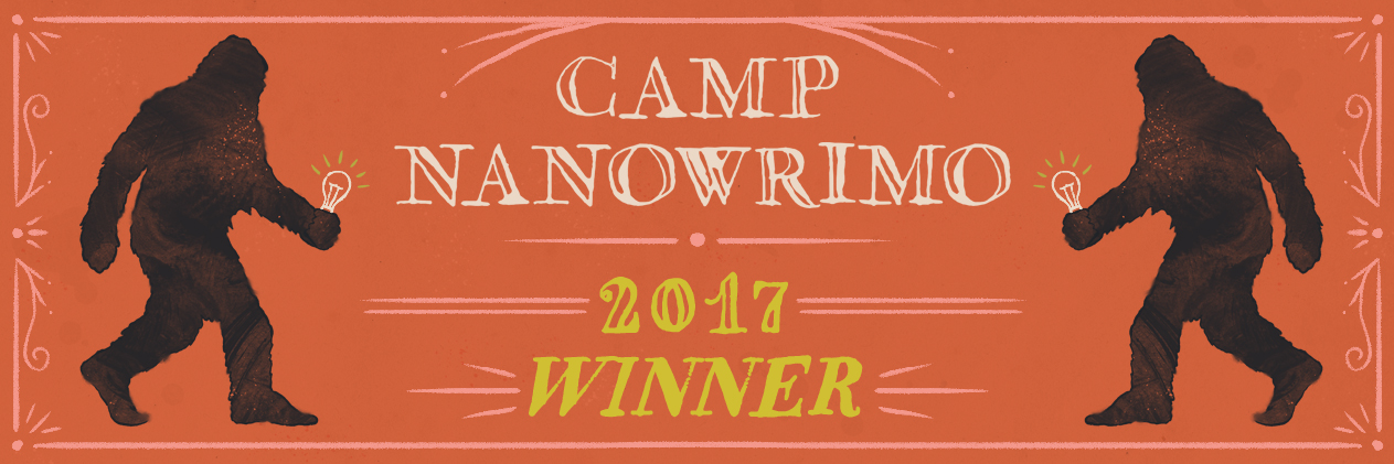 Camp-2017-Winner-Twitter-Header.jpg