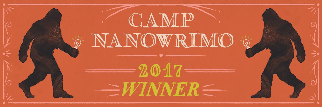 Camp-2017-Winner-Twitter-Header.jpg
